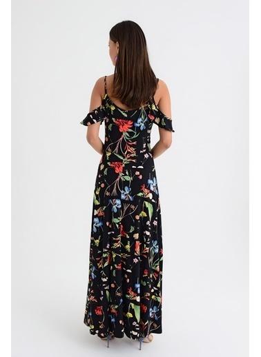 New Laviva Elbise Renkli